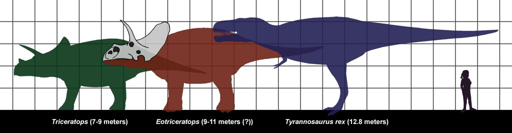 Tyrannosaurus, Triceratops and human size.