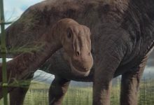 Photo of The lightest sauropods – Top 10