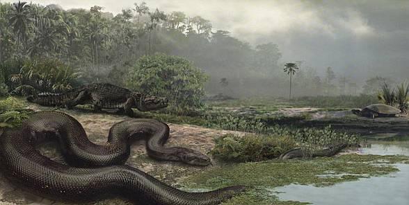 Titanoboa (Titanoboa cerrejonensis)