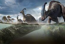 Photo of Deinosuchus – dinosaurs killer