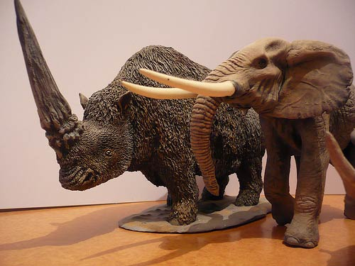 Elasmotherium and an African elephant.