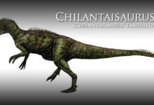 Photo of Chilantaisaurus – one of the largest theropods