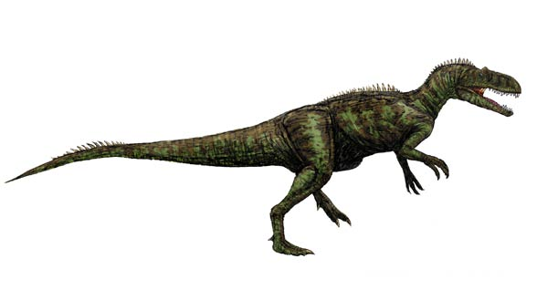 Chilantaisaurus, (Chilantaisaurus tashuikouensis)