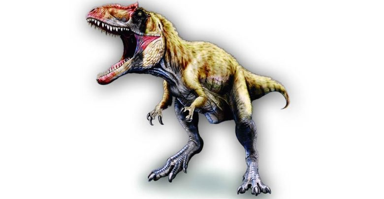 Photo of Siats – large Cretaceous theropod