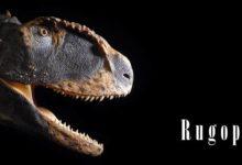 Photo of Rugops – African predator