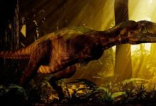 Photo of Abelisaurus – a mysterious dinosaur