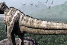 Photo of Ceratosaurus – horned lizard