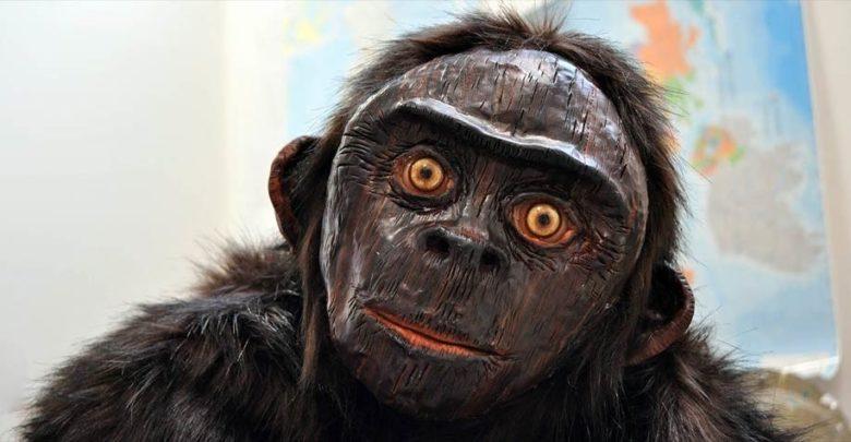 Photo of Orang Pendek – the small man