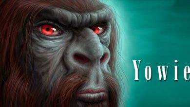 Photo of Yowie – Australian Yeti