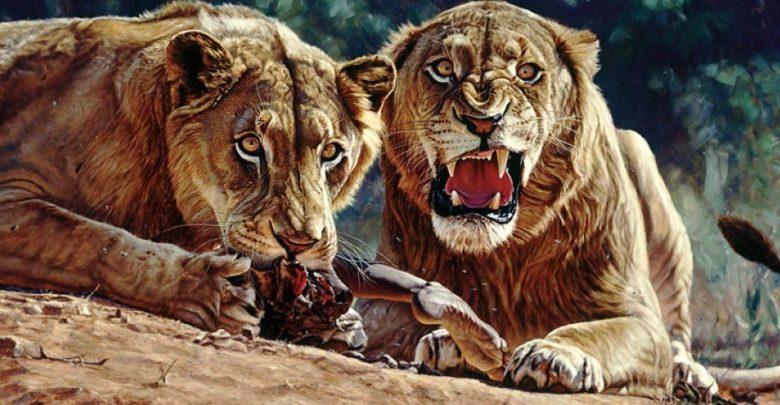 Photo of Tsavo lions – Man-Eaters of Tsavo
