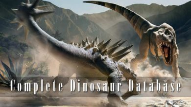 Photo of Complete Dinosaurs Database