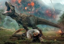 The Most Venomous Snakes Top 10 Dinoanimals Com