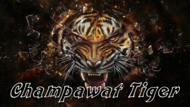 Photo of Man-eaters: The Champawat Tiger