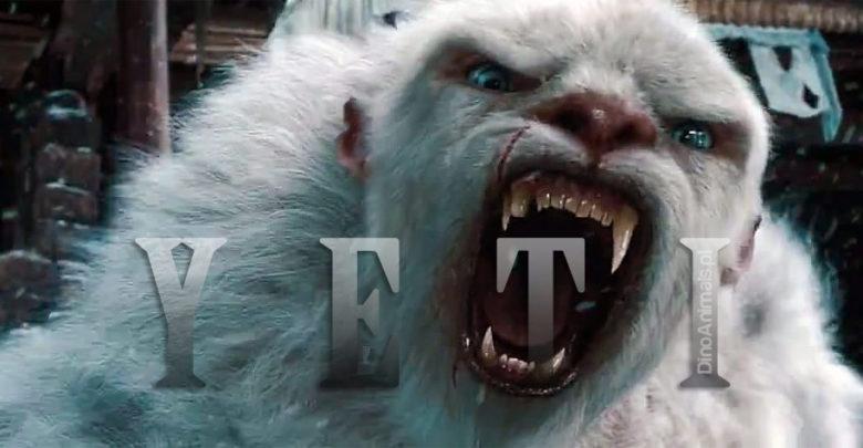 Photo of Yeti – Abominable Snowman