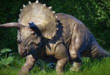 Photo of The heaviest and biggest Ceratopsians TOP 10
