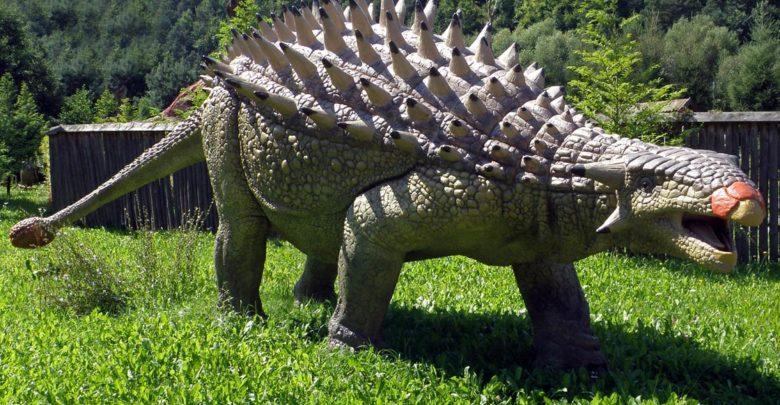Photo of The heaviest Ankylosaurus Top 10. Weight of Ankylosaurus