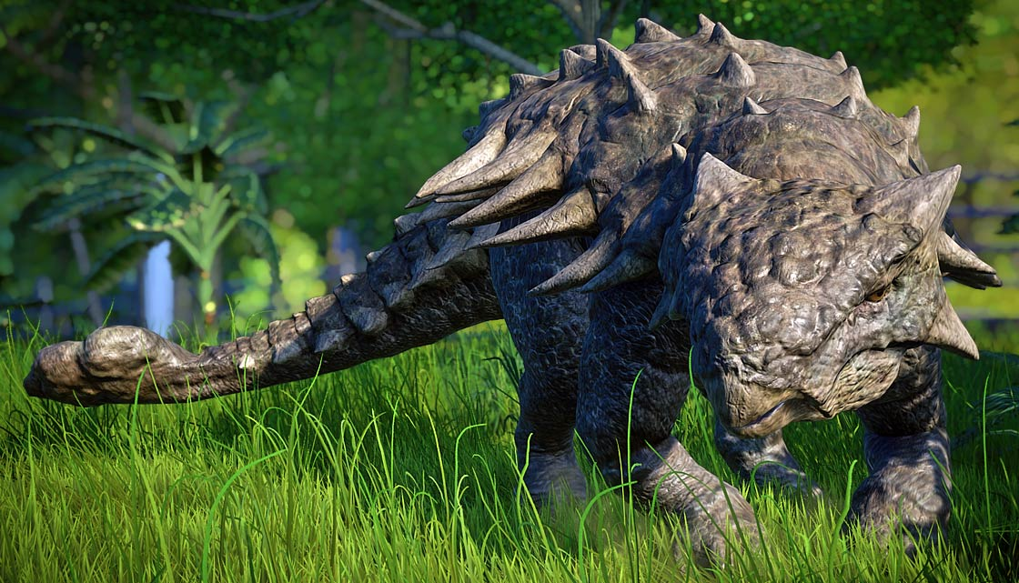 Photo of The longest Ankylosaurus Top 10. Dimensions of Ankylosaurus