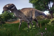 Photo of The longest Ornithischians (Ornithischia) TOP 10