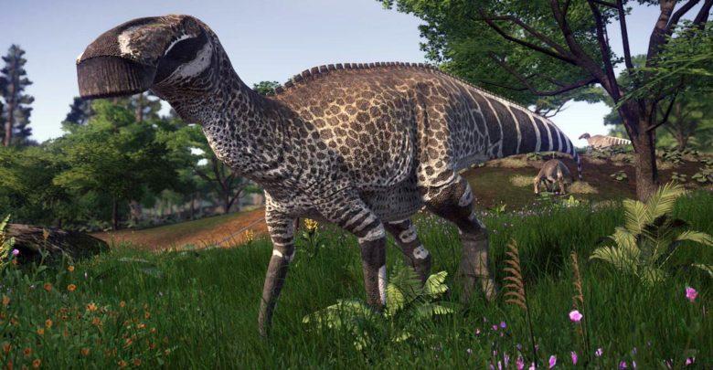 Photo of The longest Ornithischians (Ornithischia) TOP 10