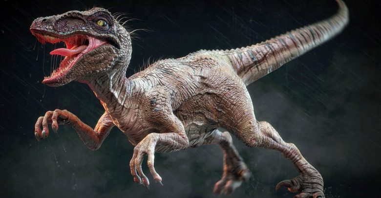 Photo of The largest Raptors (dromaeosaurs) – Top 10