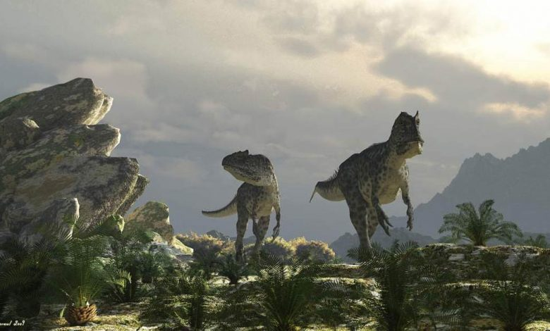 Photo of Carnosaurs – the largest predators among dinosaurs