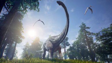Photo of Dinosaurs with the longest necks – Barosaurus