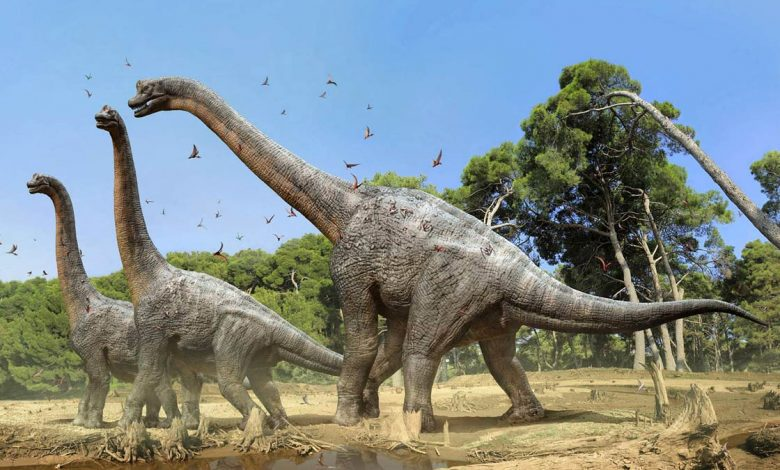 Photo of Brachiosaurus – huge herbivorous dinosaurs