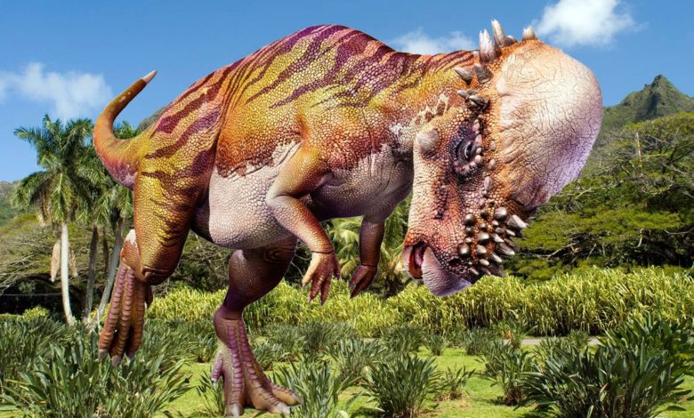 Photo of The heaviest Pachycephalosaurs (Pachycephalosauria) Top 10