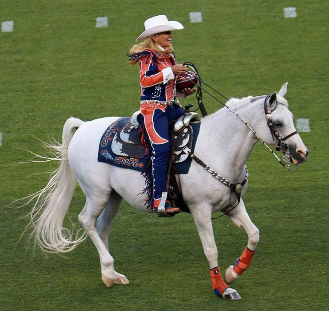 what is the name of the denver broncos horse