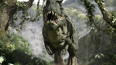 Photo of Tyrannosaurus rex – a deadly force