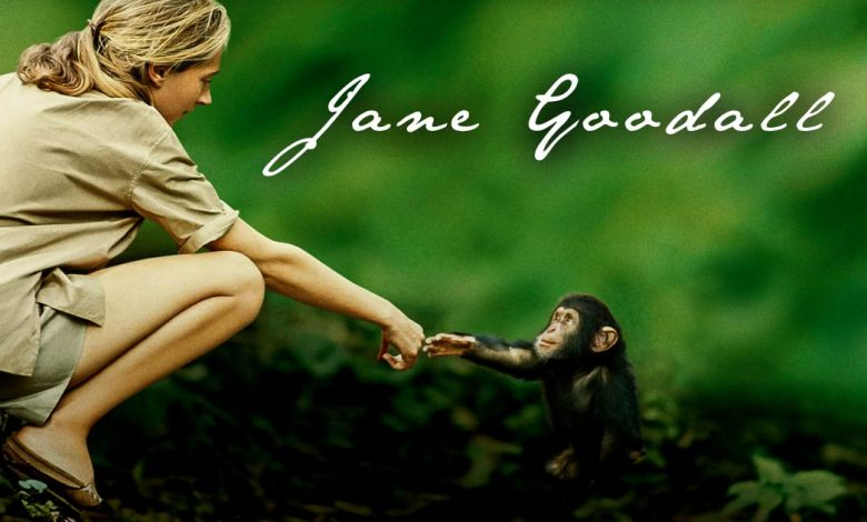 Photo of Jane Goodall and her story