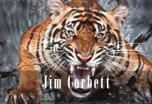 Photo of Jim Corbett – man-eater hunter