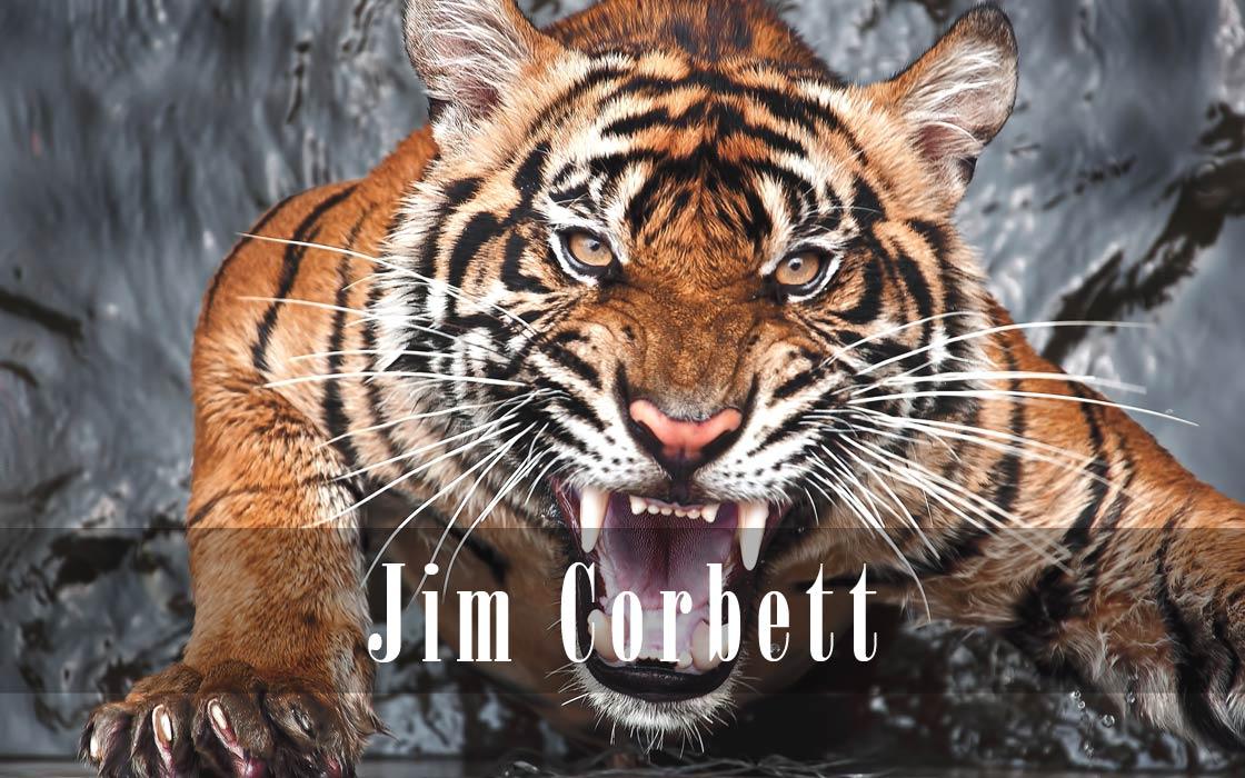 Photo of Jim Corbett – man-eater hunter