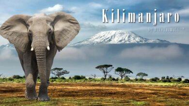 Photo of Kilimanjaro National Park