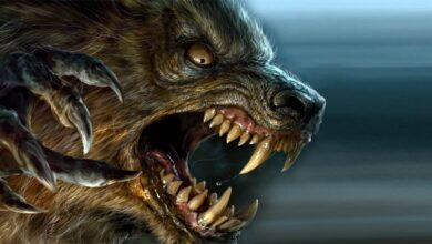 Photo of Werewolf, werewolves
