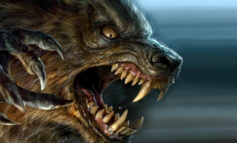 Photo of Werewolf, werewolves