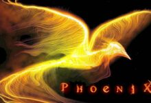 Photo of Phoenix and Roc – mythological birds